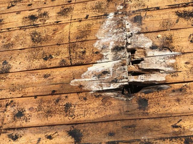 deck roof repairs fort lauderdale florida